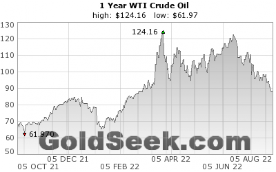 GoldSeek.com provides you with the information to make the right decisions on your WTI Crude Oil 1 Year investments